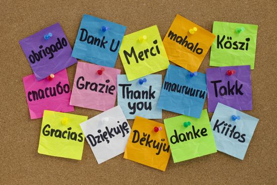 recovery-gratitude